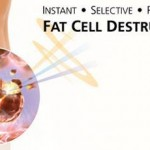 fatcell2