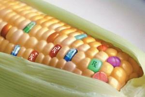 διατροφή γονίδια